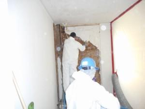 Asbestos Abatement 1