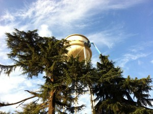 Water-Tower-28229-1000