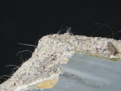 CVE asbestos in plaster