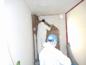 Asbestos Abatement 1
