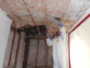Asbestos Abatement 2